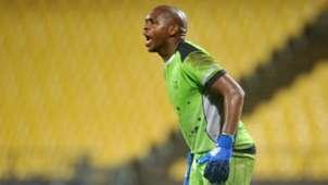 Mbongeni Mzimela Platinum Stars