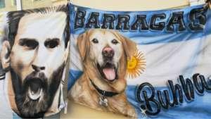 Argentina Kazan Bubba Perro 290618