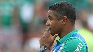 Roger Machado Botafogo-SP Palmeiras Paulista 21012018