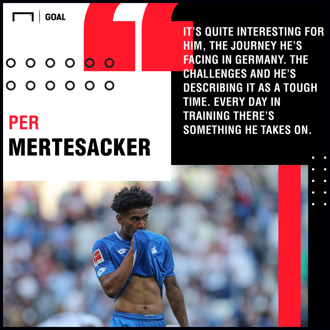 Hoffenheim wonderkid Nelson showing he is ready to star at Arsenal