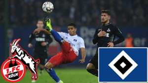 GFX 1. FC Köln HSV TV