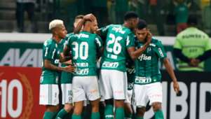 Palmeiras Botafogo Brasileirao Serie A 27112017