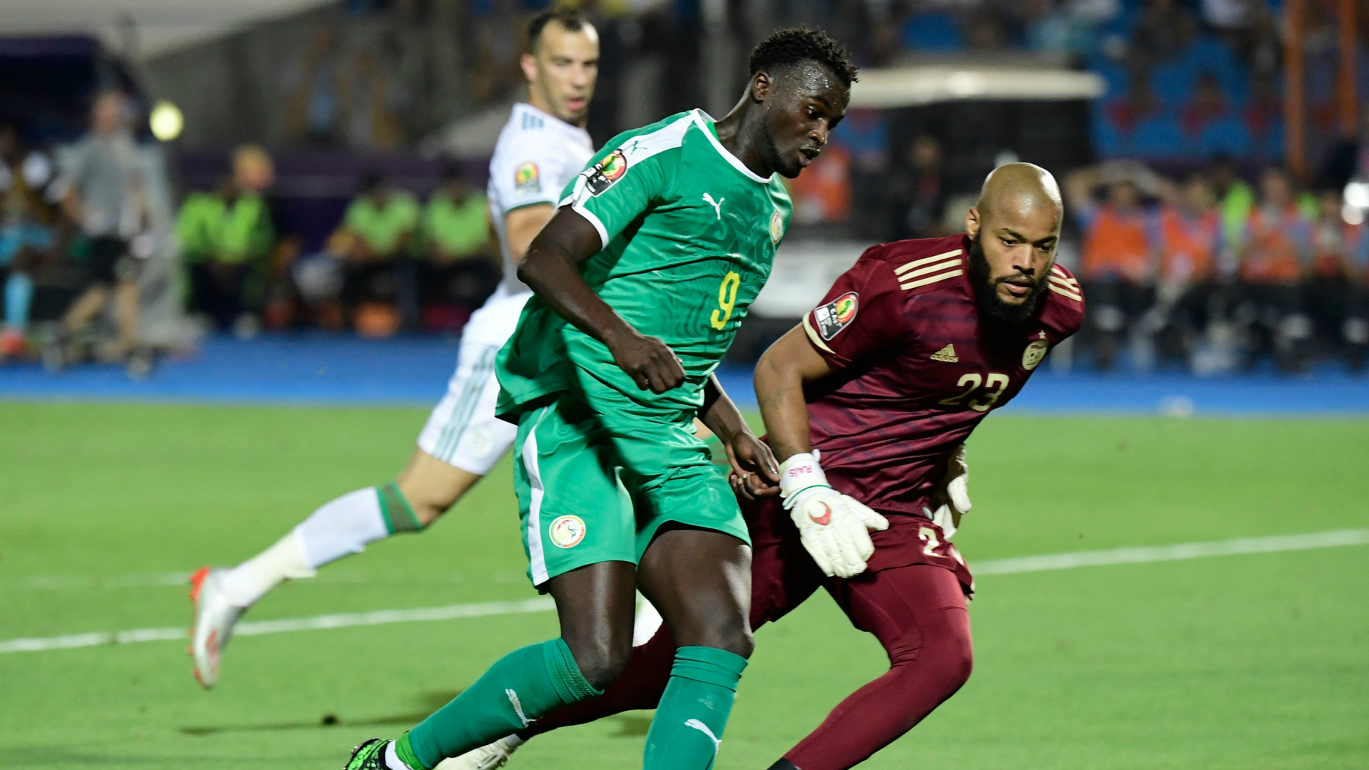 Image result for Rais M'Bolhi afcon