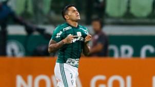 Dudu Palmeiras Botafogo Brasileirao Serie A 27112017