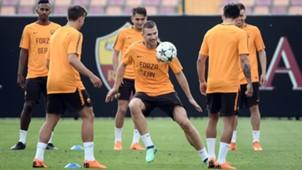 Roma training