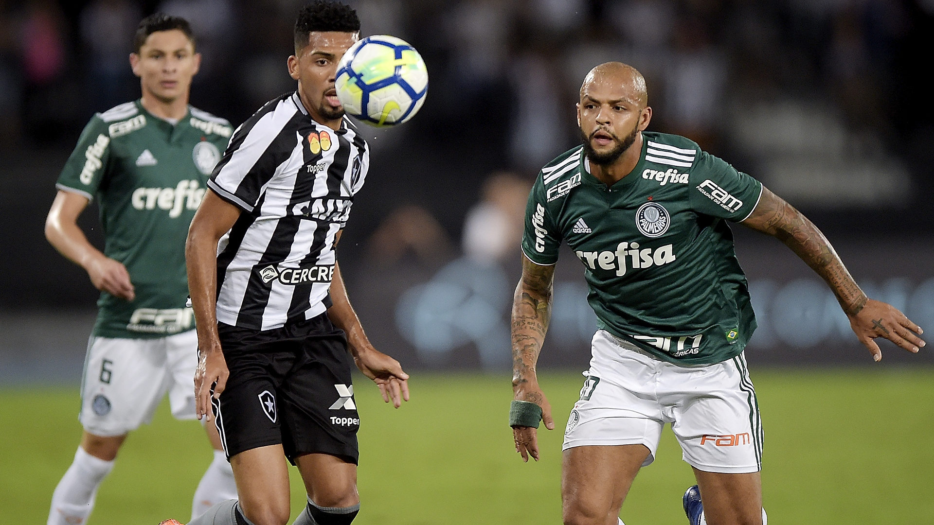 Matheus Fernandes Felipe Melo Botafogo Palmeiras 16042018 Brasileirao Serie A