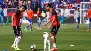 Luis Pedro Figueroa y Claudio Baeza Colo Colo Universidad Chile 080417