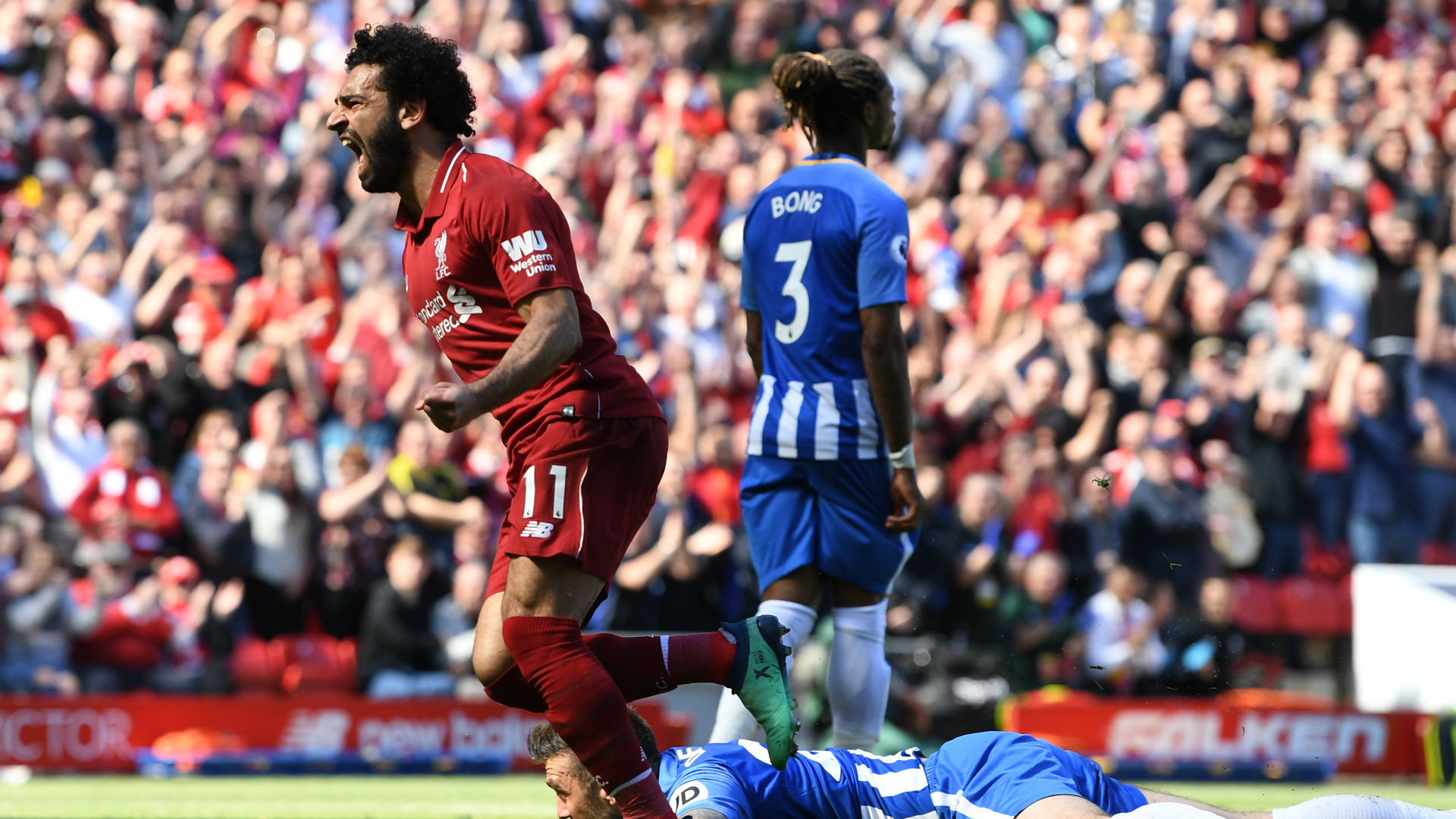 Mohamed Salah scores against Brighton