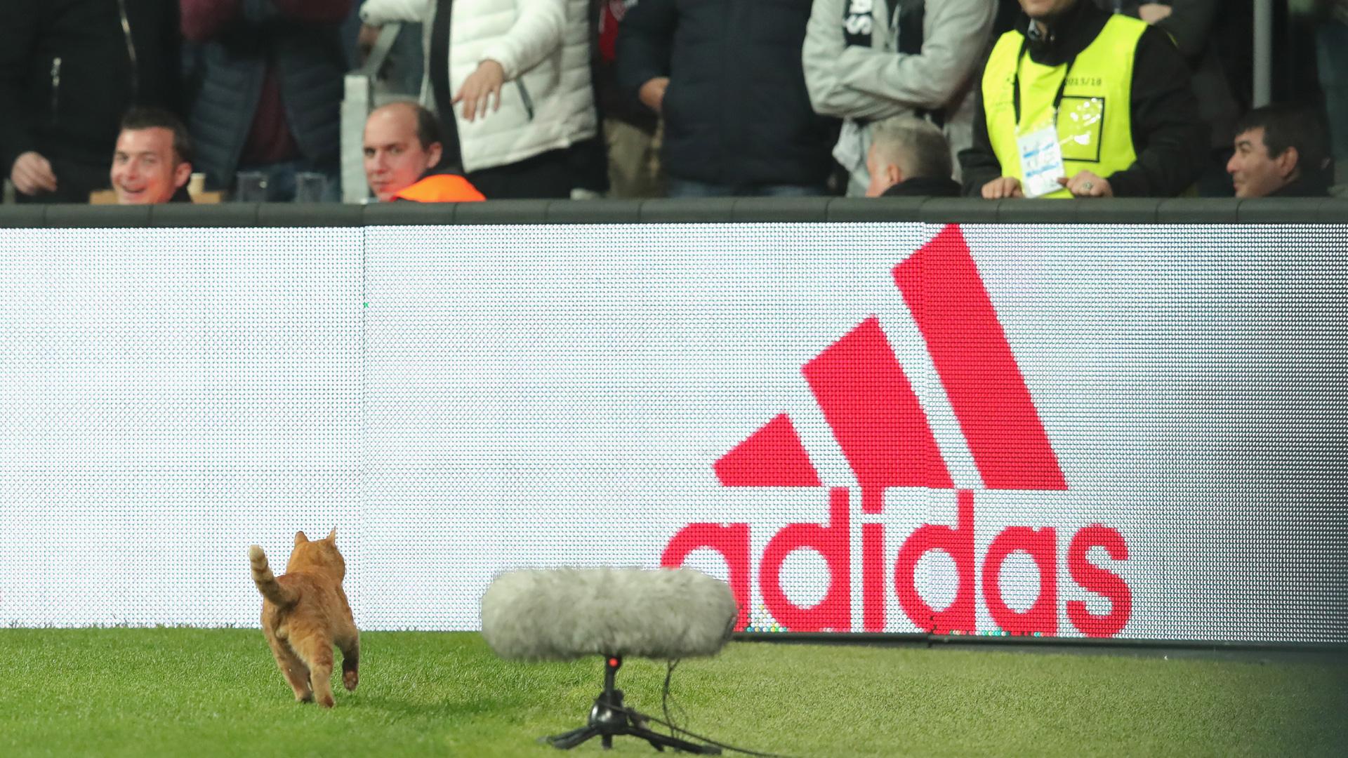 Bayern stürmen problemlos ins Viertelfinale