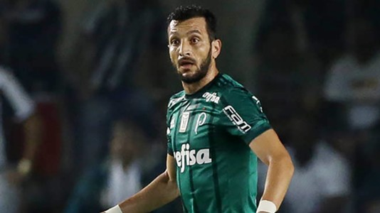 Edu Dracena Santos Palmeiras Brasileirao Serie A 14062017