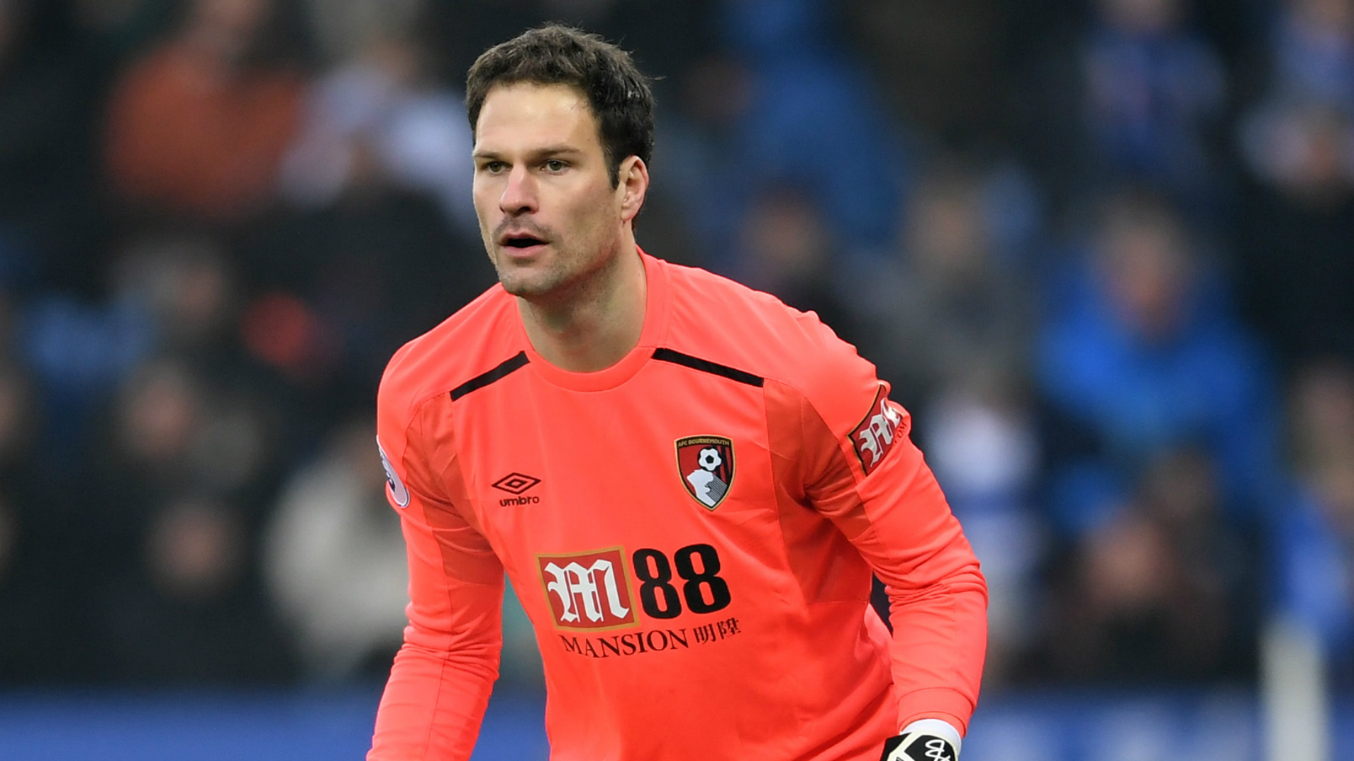 Asmir Begovic Bournemouth Premier League Team of the Week
