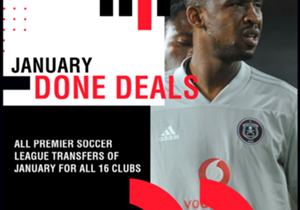 Goal takes a look at all PSL transfers of January 2019 for all 16 clubs.