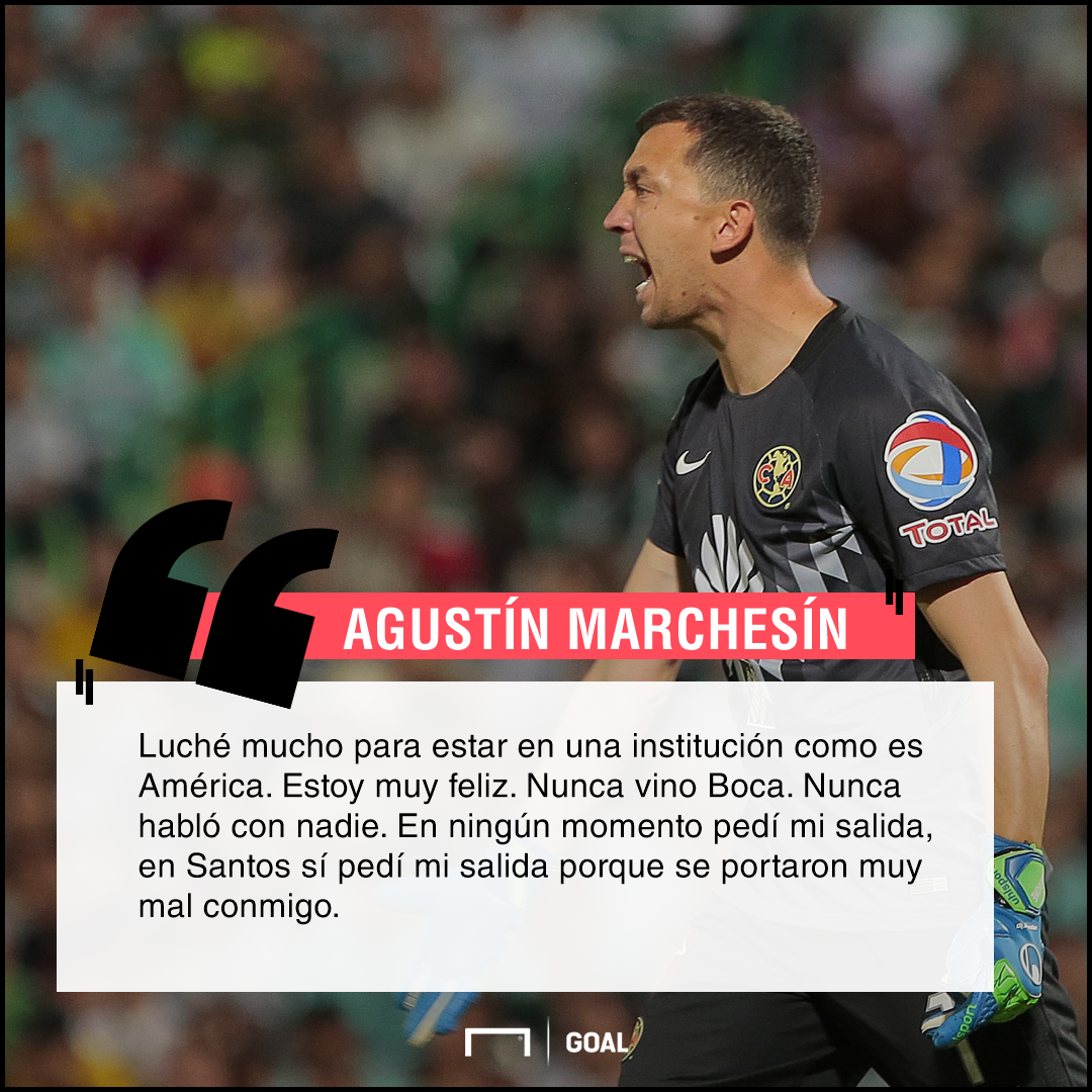 Marchesín quote