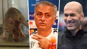 Rat, Mourinho, Zidane composite