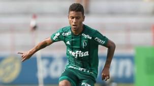 Marcos Rocha Botafogo-SP Palmeiras Paulista 21012018