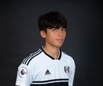 Ben Davies, Fulham