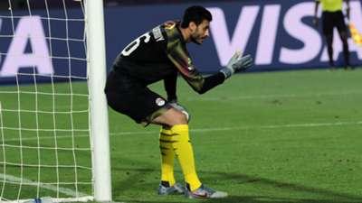 Mohamed El-Shenawy
