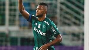 Miguel Borja Palmeiras Vasco Brasileirao Serie A 14052017
