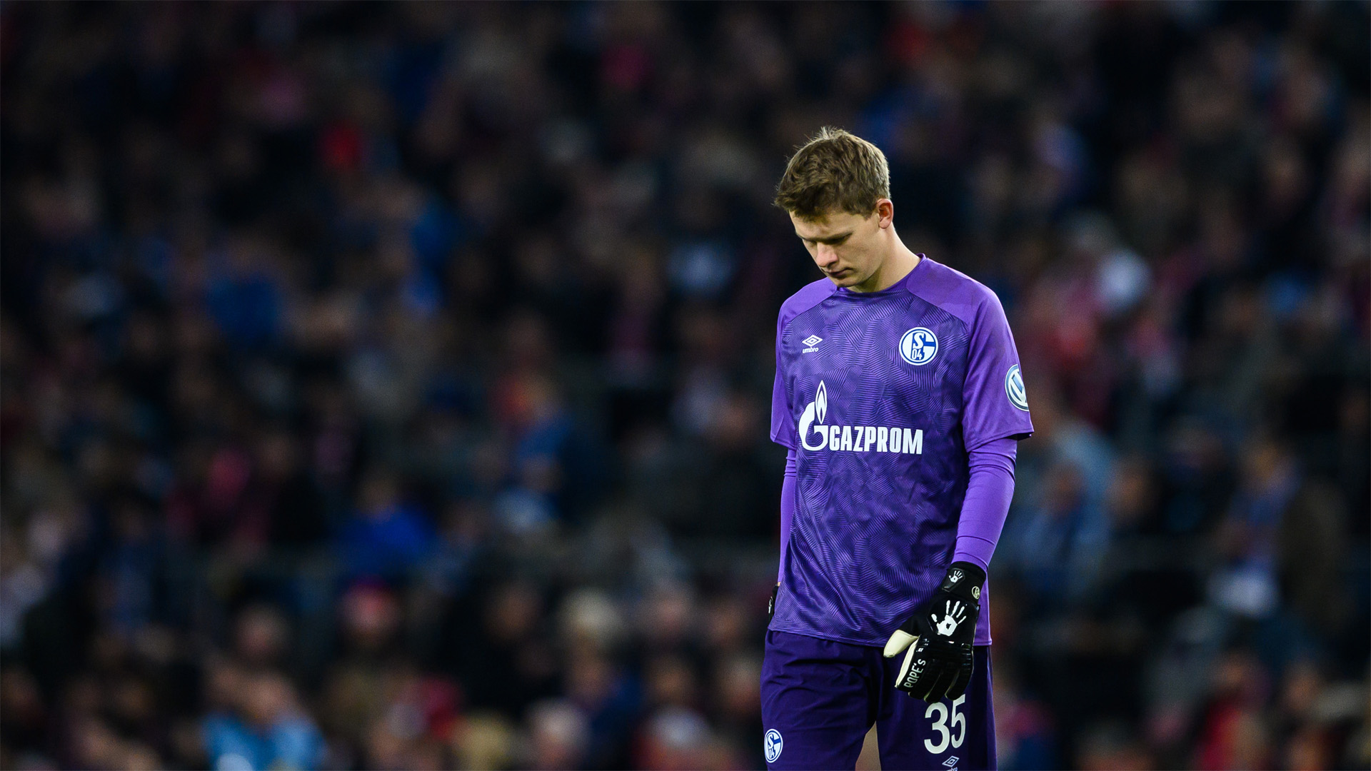 Alexander Nübel FC Schal 04 2018