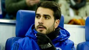 Schalke 04 Pablo Insua Saison 2017/18