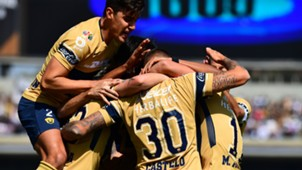 Pumas Liga MX