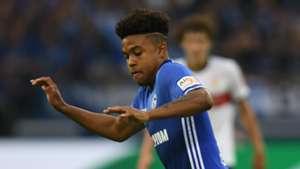 Weston McKennie Schalke Stuttgart