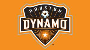 GFX Houston Dynamo Logo Panel