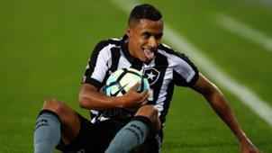 Arnaldo Botafogo Gremio Brasileirao Serie A 13082017