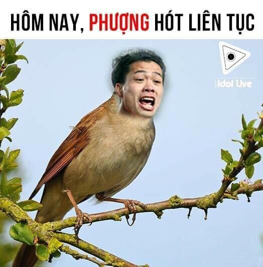 Việt Nam Lào ảnh chế