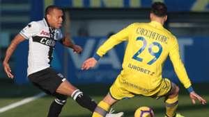 Biabiany Cacciatore Parma Chievo