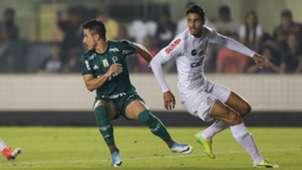 Verissimo Santos Palmeiras