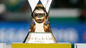 Troféu Taça Palmeiras campeão Brasileirão Série A 02122018