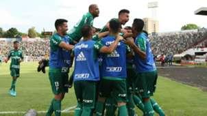 Botafogo-SP Palmeiras Paulista 21012018