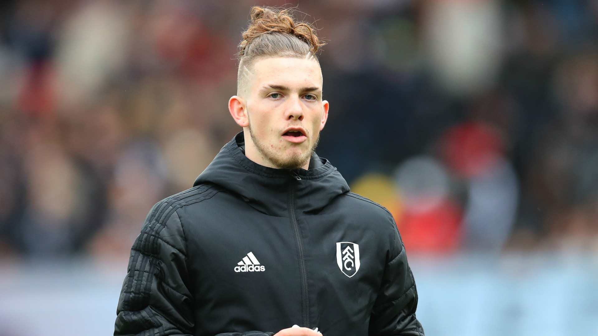 Harvey Elliott Fulham 2018-19