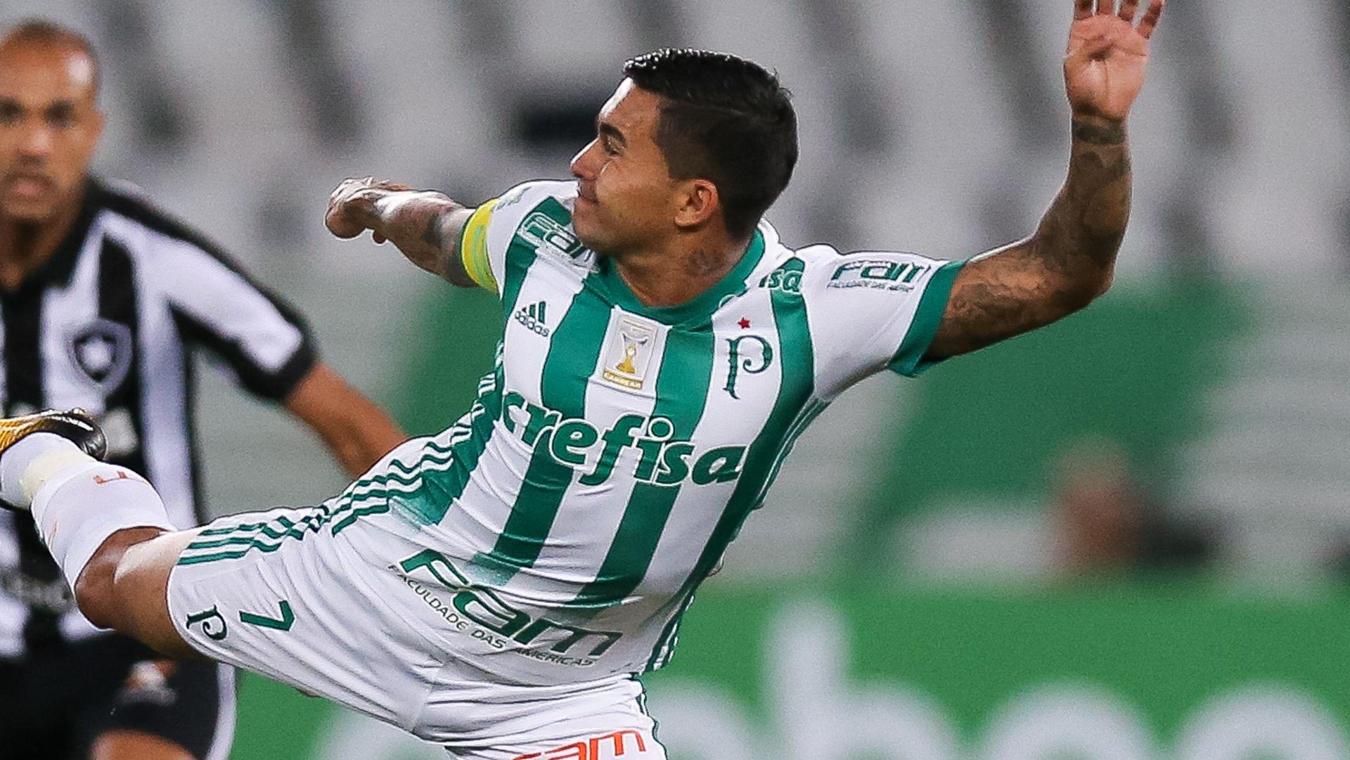 Dudu Botafogo Palmeiras Brasileirao Serie A 02082017