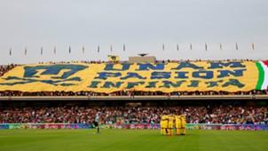 Pumas fans