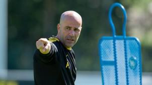 ONLY GERMAN || Peter Bosz Borussia Dortmund