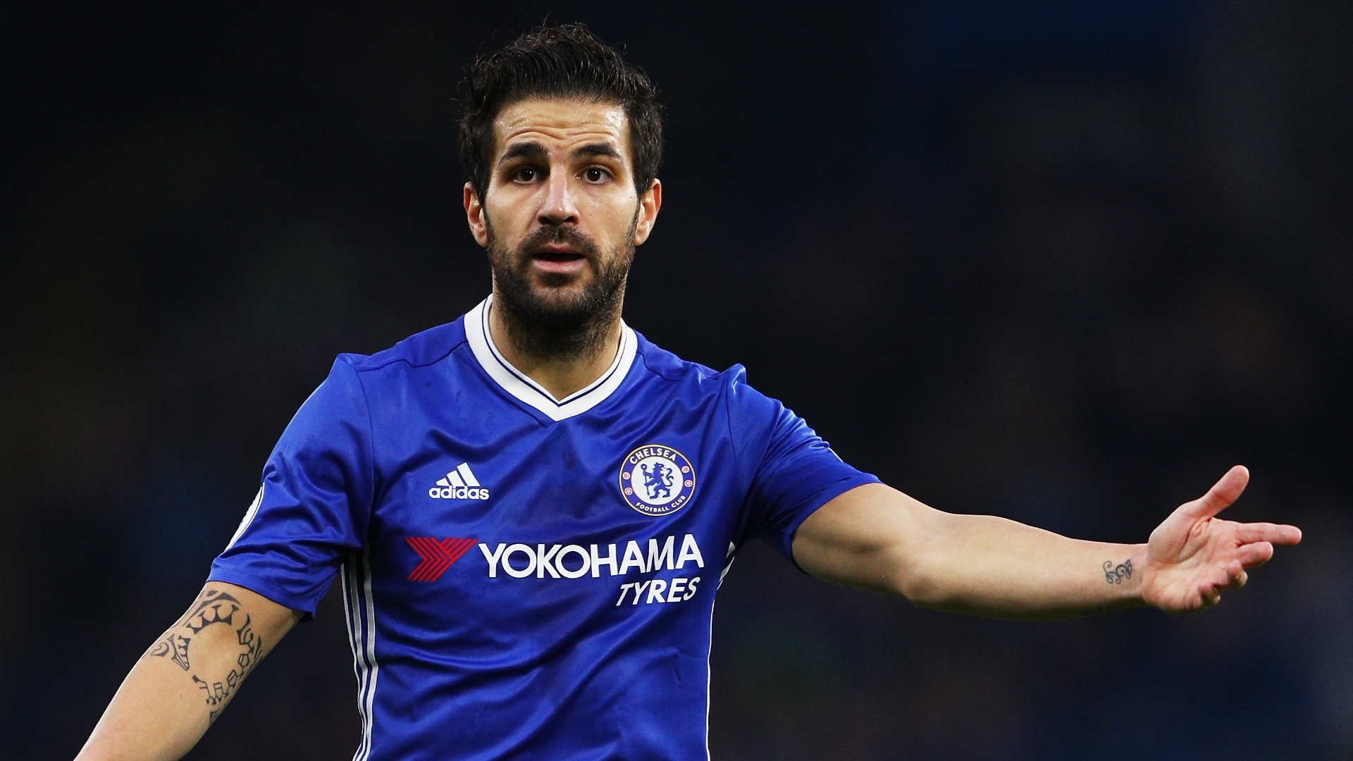 Cesc Fabregas Talks Up Doing The Dirty Work At Chelsea