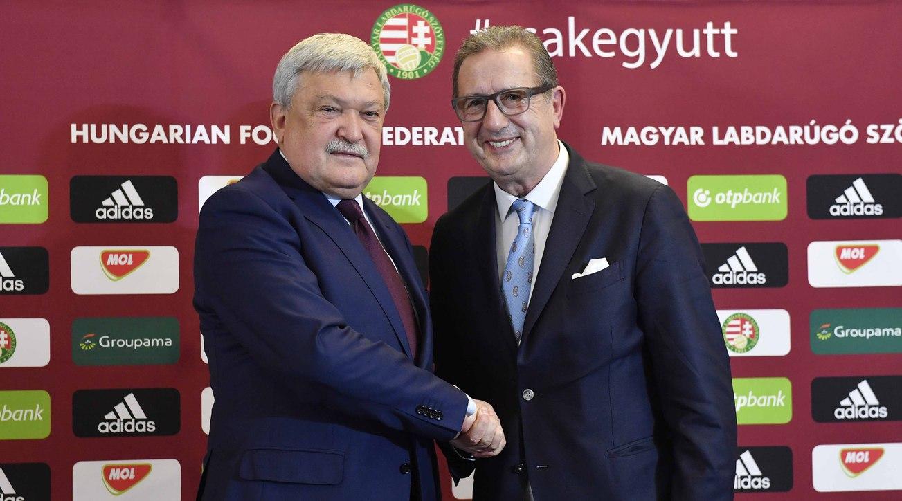 George Leekens Csányi Sándor magyar válogatott Hungary