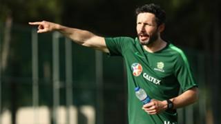 Mark van Bommel Socceroos 2018