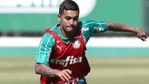 Dudu treino Palmeiras 2019