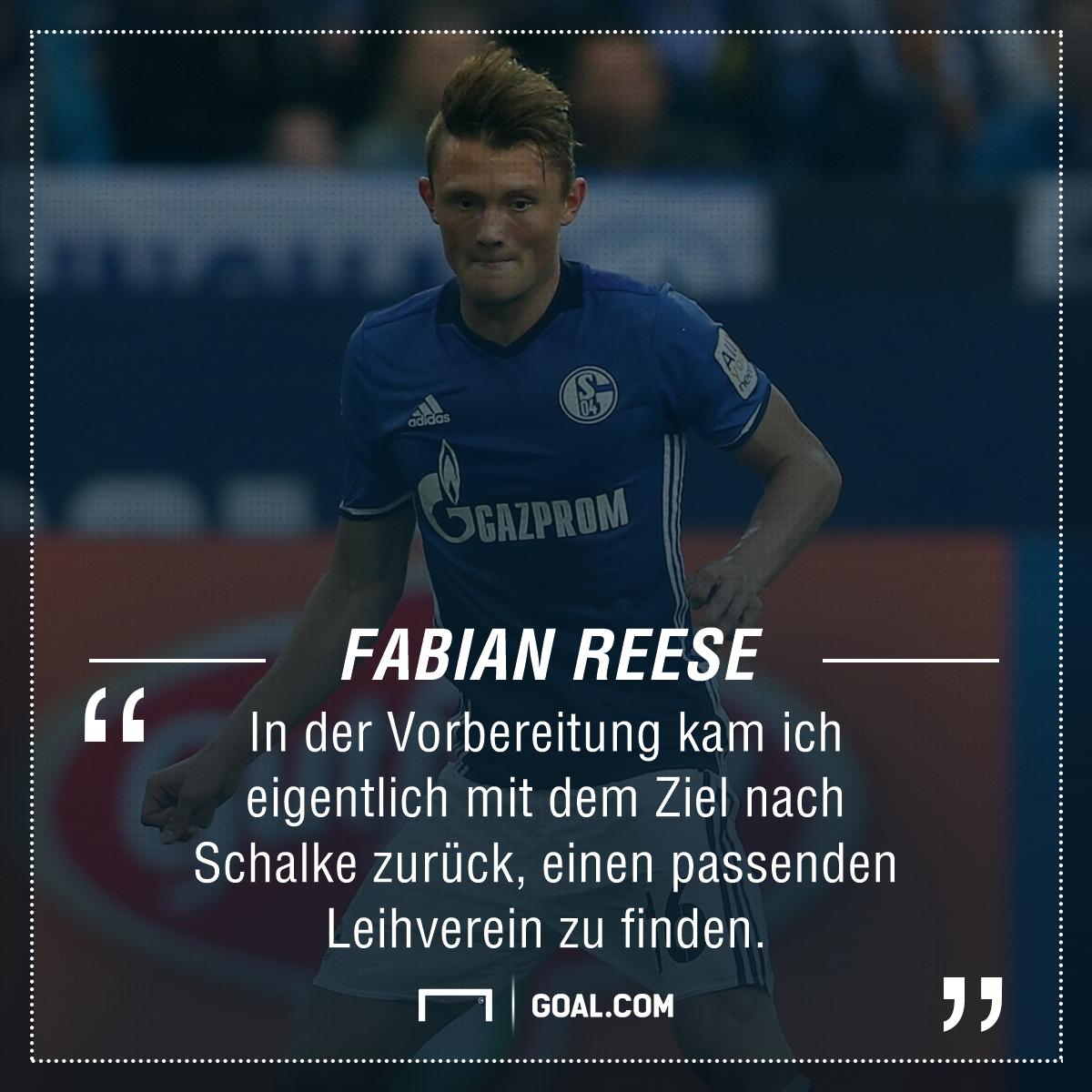 GFX Fabian Reese