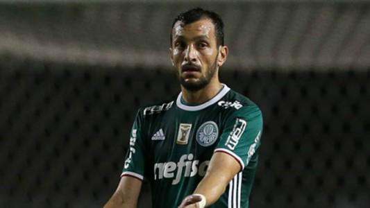 Edu Dracena - Palmeiras - 7/04/2017