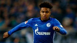 Weston McKennie Schalke