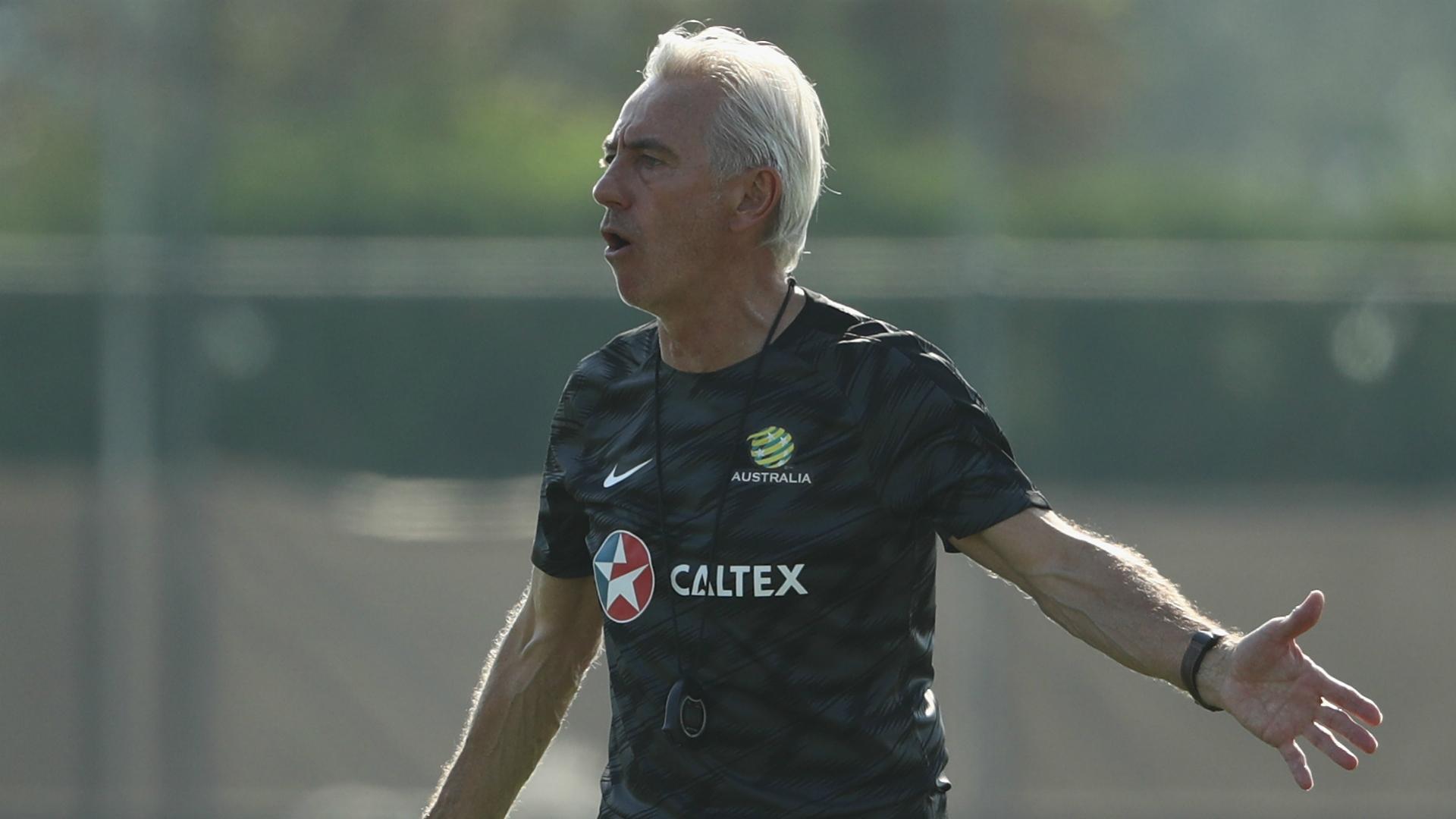 Bert van Marwijk Socceroos
