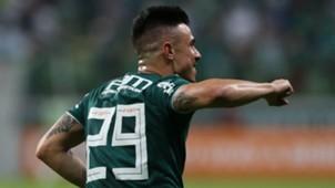 Willian Palmeiras Flamengo Brasileirao Serie A 13062018