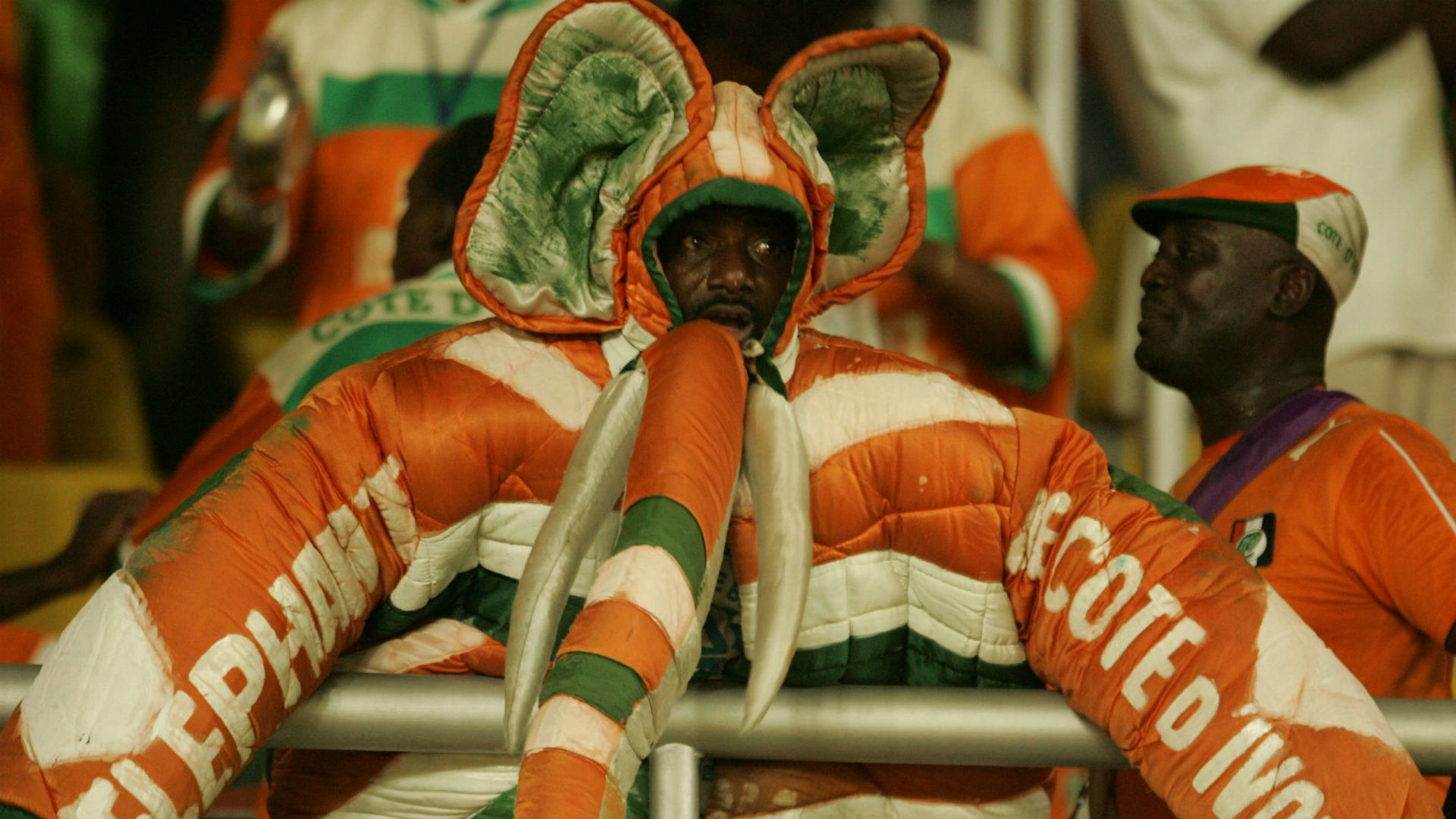 Ivory Coast fan 2008