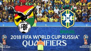 GFX Bolivia Brazil Bolivien Brasilien