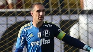 Fernando Prass Vasco Palmeiras Brasileirao Serie A 13082017