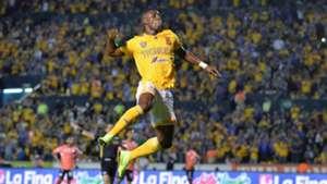 Julian Quinones Tigres